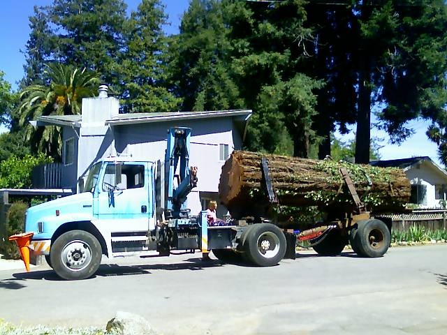 Redwoodlogtruck